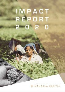 Impact Report 2020: Sustainable and Scalable Impact
